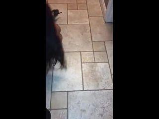 vídeo de sexo mulher com mulher uma chupando a buceta da outra
